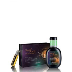 Alfa-parf Kit Cellula Madre+ Restructuring e-commerce parrucchieri