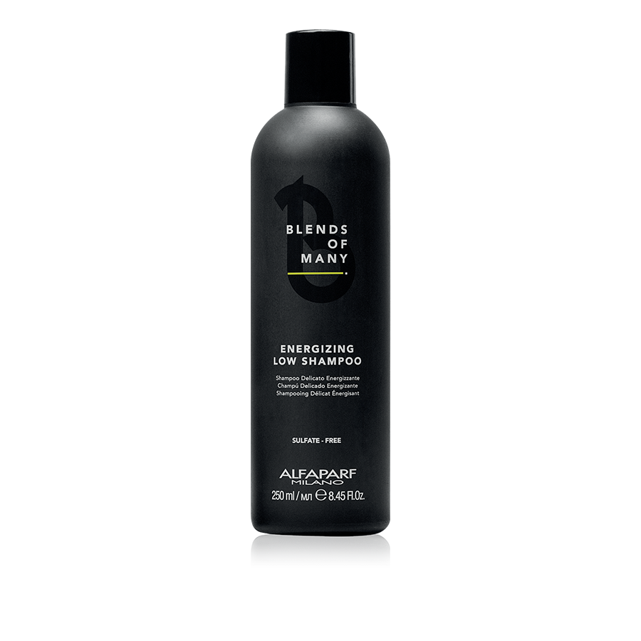 fashion styles outlet store nice shoes ENERGIZING LOW SHAMPOO FOR MAN di ALFAPARF